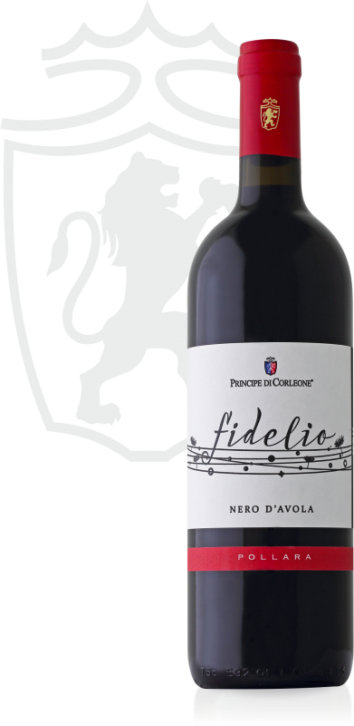 Fidelio Nero 1