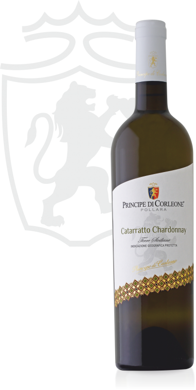 Catarratto Chardonnay Bianca 1